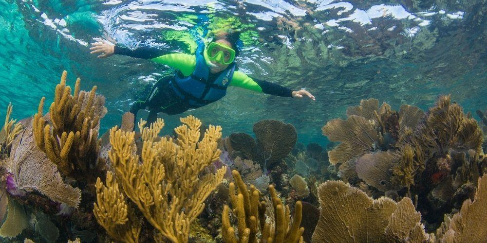Snorkel in Isla Mujeres 1