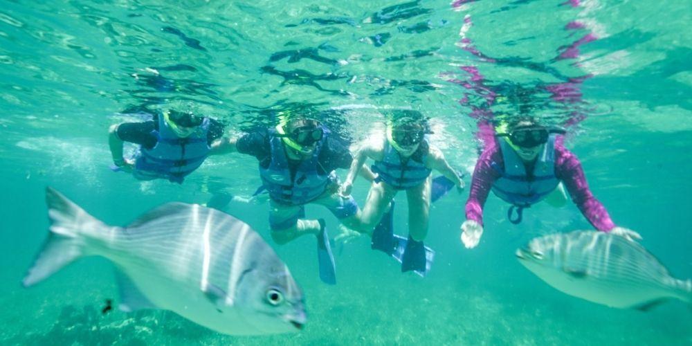 Snorkel in Isla Mujeres 4
