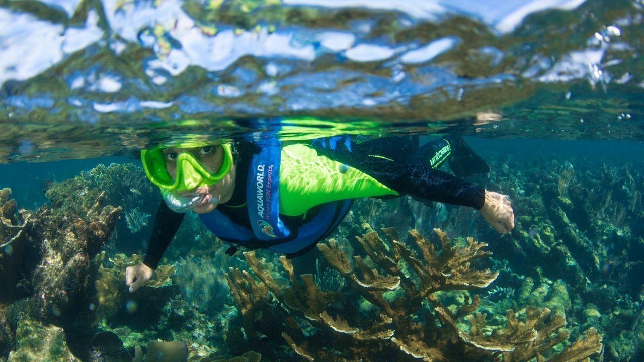 Snorkel in Isla Mujeres 8